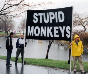 stupid monkey - Church of Euthanasia